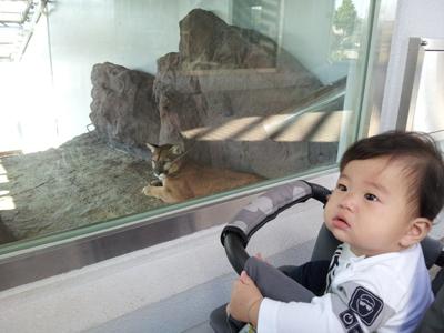 2011-10-19 14.06.00動物園1.jpg