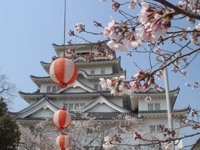 fukuyamajou to sakura.jpg